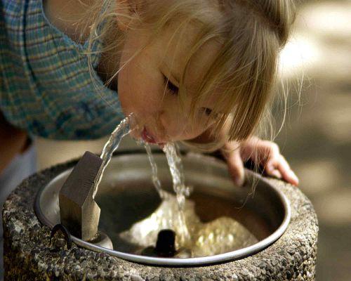 Bild zum Artikel Lebenselixier Wasser