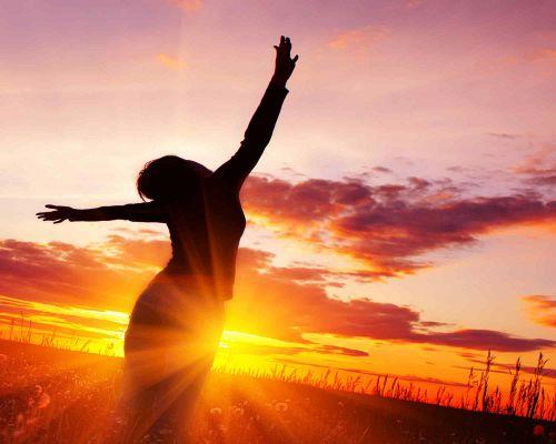 Bild zum Artikel Sonnenlicht – ein Elixier für die Seele