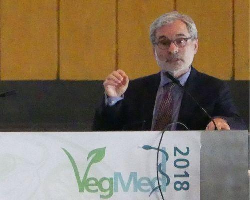 Bild zum Artikel Fachkongress zu pflanzenbasierter Ernährung