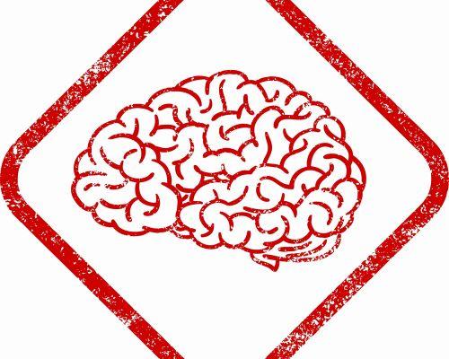 Bild zum Artikel Bewegung im Gehirn (Über neuronale Plastizität)
